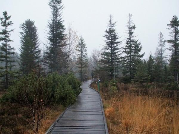Снимка: Времето днес: Облачно, след обяд - валежи