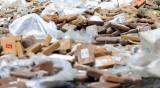 Диви свине разкриха скривалище на кокаин в Тоскана