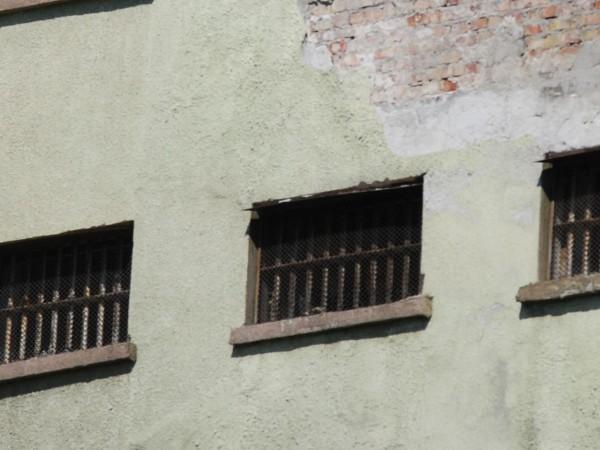 Районният съд в Пловдив задържа под стража д-р Инна Бончева,