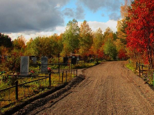 В края на месец ноември са били поругани гробища в