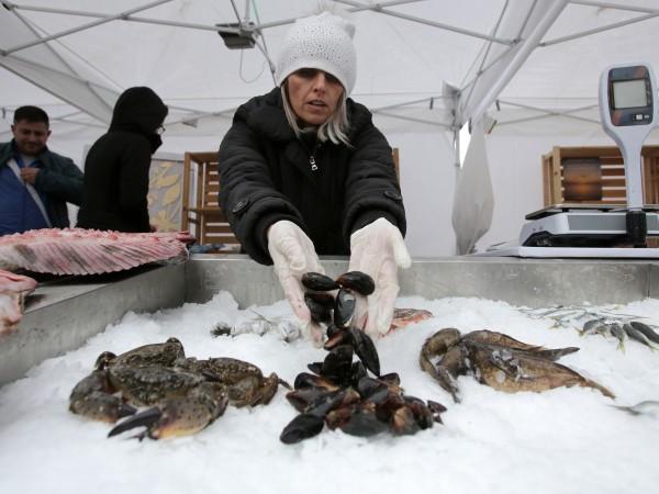 Барбун, калкан, чернокоп, сафрид са само час от българските черноморски