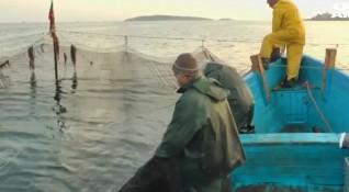 Слаб сезон за рибарите. Защо мрежите останаха празни?