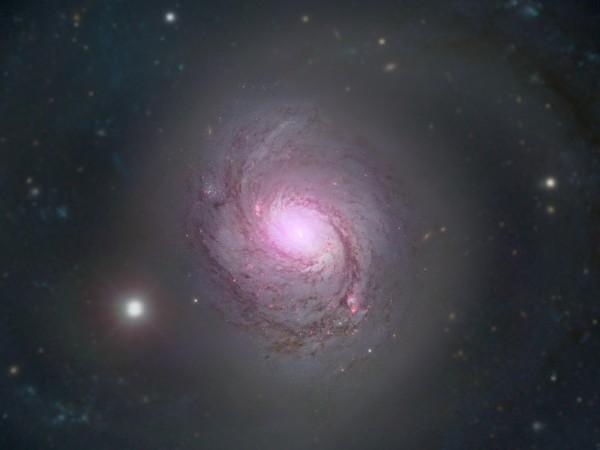 """Астрономи от института за извънземна физика """"Макс Планк"""" и Университетската"""