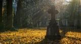 Френска кметица забрани да се умира в почивни и празнични дни