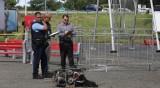 Първи в историята смъртен случай на пилот на реактивна раница