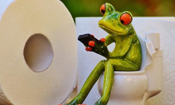 Учени си говорят с жаби по телефона