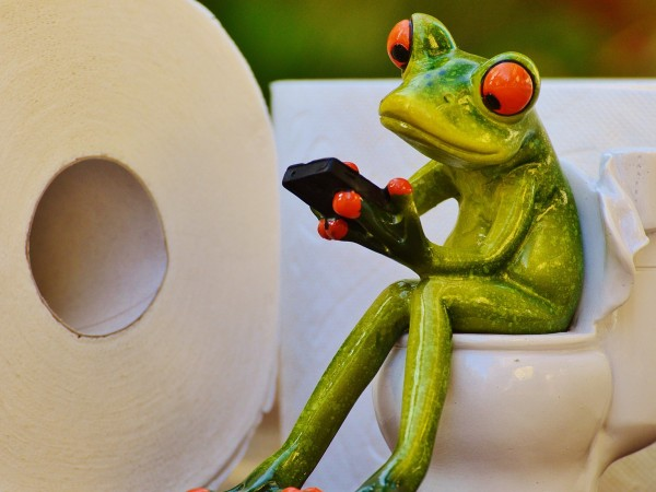 Учени от Австралия телефонират на жаби с цел да ги