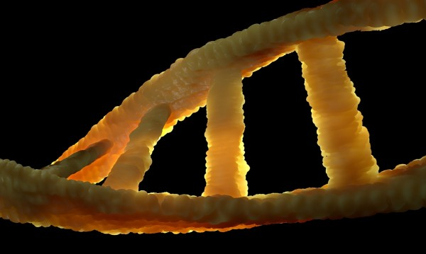 Мъж стана химера: Донор на костен мозък предаде ДНК-то си на приемника