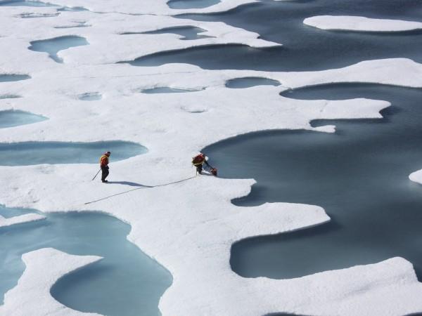 В Аляска ледниците се топят с рекордна бързина. Тази година