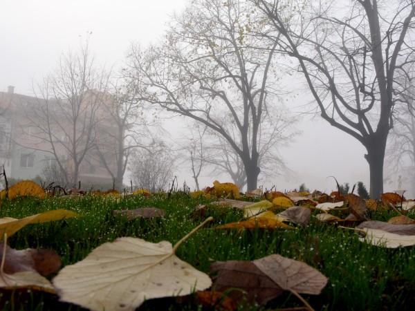 Съботата над страната ще бъде предимно облачна, в равнините мъглива,