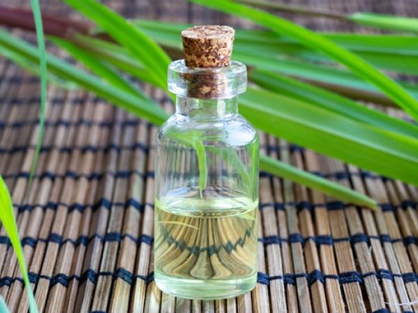 Етеричните масла от векове са в помощ на хората в