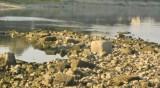 Кметът на Кричим внесе сигнал за замърсяване на река Въча