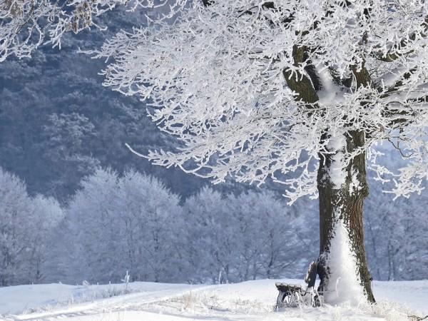 В неделя през страната ще преминава студен атмосферен фронт. Ще