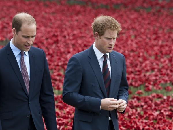 Принц Уилям изрази надежда, че кралското семейство ще бъде отново