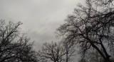 Времето днес: Слаб сняг, но от утре се затопля