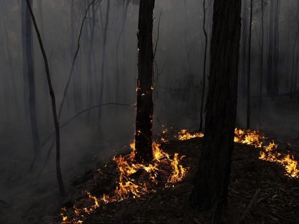 Шестима пожарникари доброволци в Австралия пострадаха, когато пожарната им кола