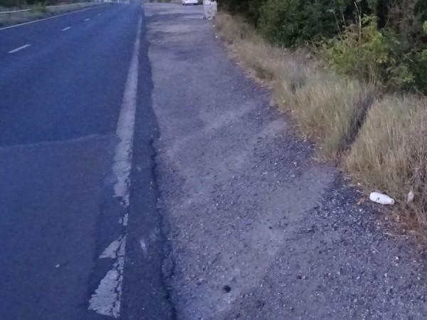 """Камион, превозващ коне, е катастрофирал тази сутрин в местността """"Боаза"""""""