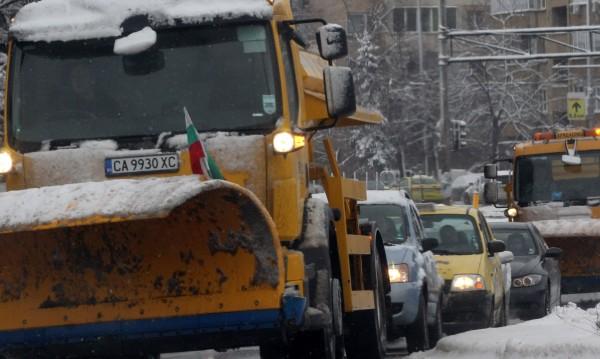 87 снегорина чистят в София, през нощта вятърът събори клони