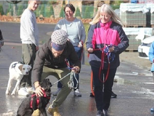 """На 14 февруари - """"Св. Валентин"""", 22 кучета от общинските"""