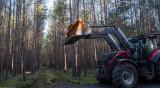 Заради изсичането на гори: Без Tesla в Германия?