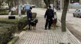 Седем задържани за обир в Стара Загора, акцията в района продължава