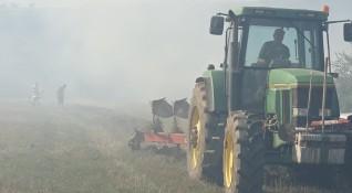Всеки пети нает в земеделието - с договор