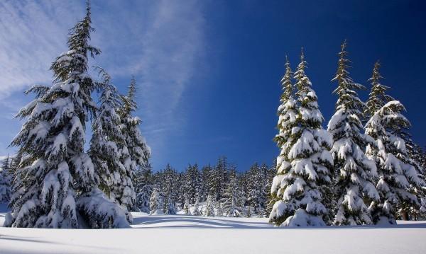 Зимата се завръща в четвъртък и петък със слаб сняг