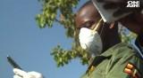Армията в Уганда срещу нашествие от скакалци