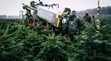 Германия се нуждае от работници, търси ги на Балканите