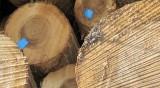 Инцидент в цех за дървесина, двама работници със счупени крака