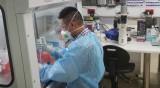 Най-рано в края на април ще има ваксина срещу коронавируса