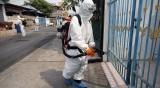 Пулмолог: Коронавирусът ще изчезне през април!