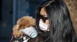 Южен Китай се стресна? Спира яденето на кучета, котки, змии...