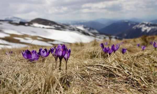 Какво ще е времето през капризния март? По-хладно от обичайното