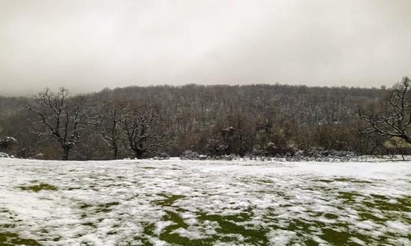 Снегът си отива, но ще е облачно в цялата страна