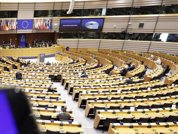 Председателят на комисията на Европейския парламент по култура и образование