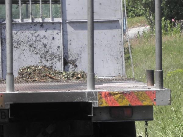 Служители на РУ – Елена разследват противозаконно отнемане на товарен