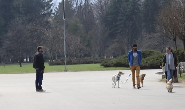 Строги мерки в Стара Загора: Най-много по двама и без разходки на кучета