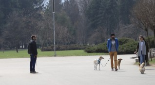 Строги мерки в Стара Загора: Само по 1 и без разходки на кучета