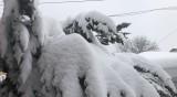 Жълт и оранжев код за сняг, чакат се между 10 и 20 сантиметра
