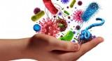 По време на пандемия: Как да подсилим имунитета си