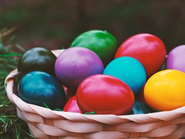 Не се очаква да има спекула с цените на яйцата
