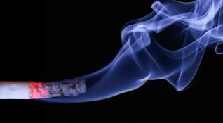 Пловдивчанин изпуши най-скъпата цигара - 5 бона