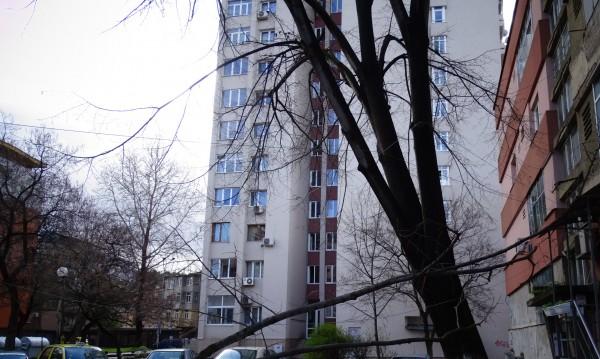 Силният вятър в Добрич нанесе щети