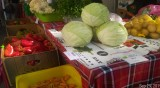 Фермери искат отваряне на пазара им в София след седмица