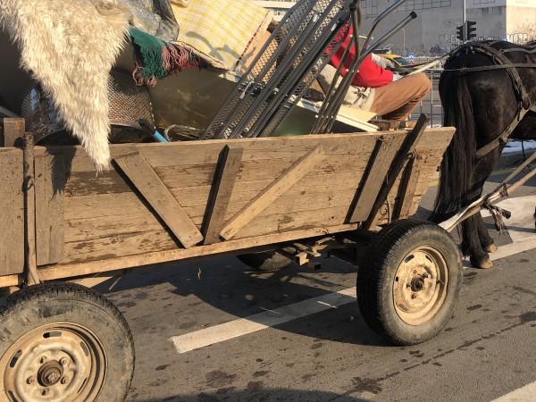 Полицейски екип е констатирал кон с каруца, натоварена със стари