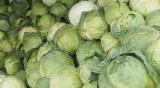 17 тона зеле и близо 5 тона краставици с пестициди спряха на границата