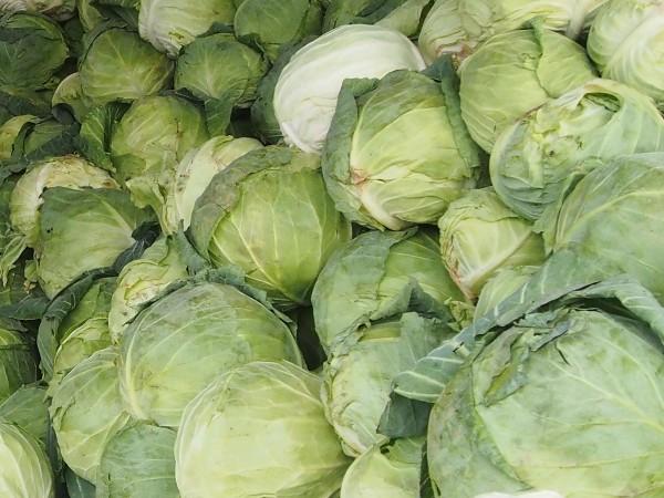Българската агенция по безопасност на храните възбрани над 20 тона