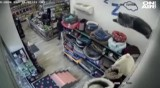 Пълна наглост: Жена открадна кутия за дарения от зоомагазин