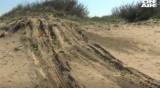 "Сигнал: Джип унищожи дюните на плаж ""Корал"""